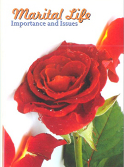 marital_life_importance_and_issues